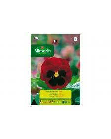 Vilmorin σπόροι πανσές κόκκινος